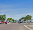 Cactus Gardens RV Resort in Yuma AZ is a member of the Arizona Association of RV Parks and Campgrounds