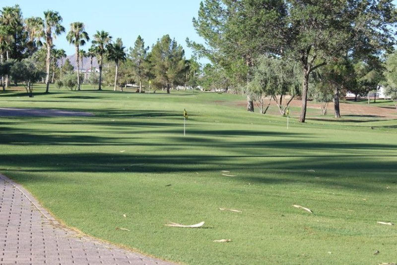 Palm Creek Golf And Rv Resort Go Camping In Arizona